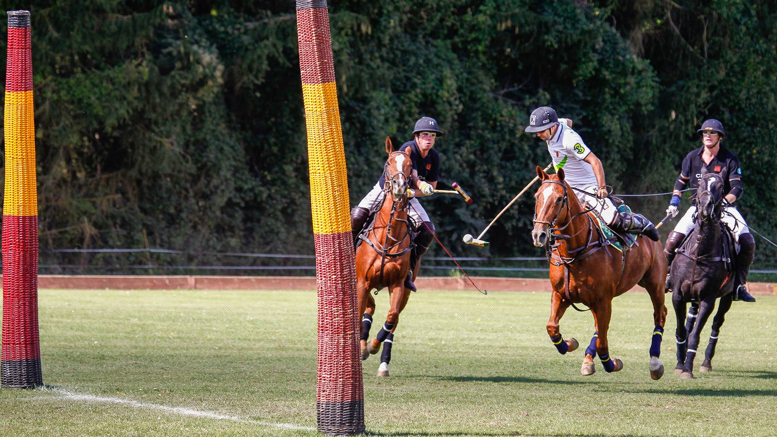 jugadores de polo en acción