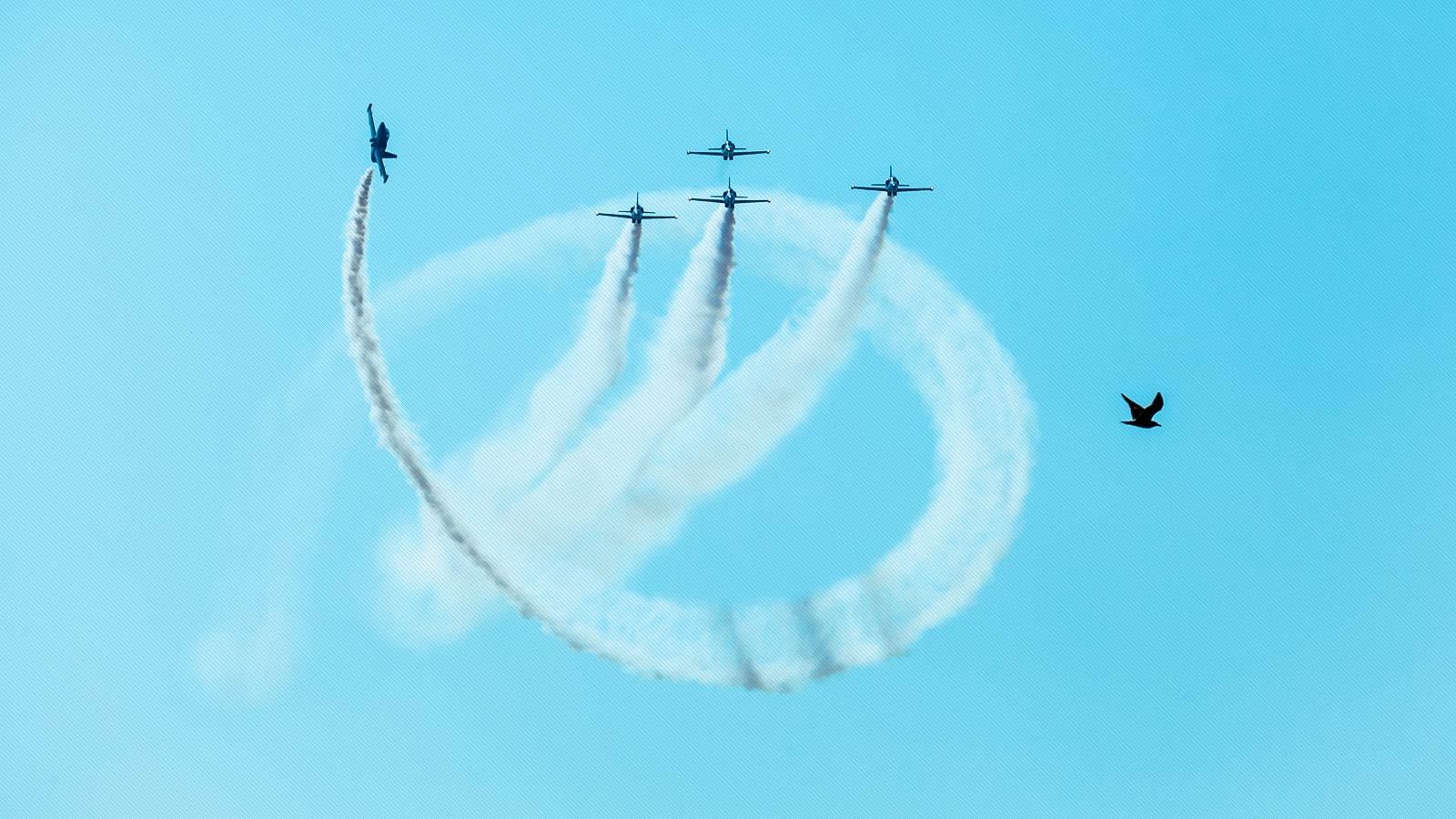 grupo de aviones en exhibición aerea en Barcelona y a la vez cruza un pajaro